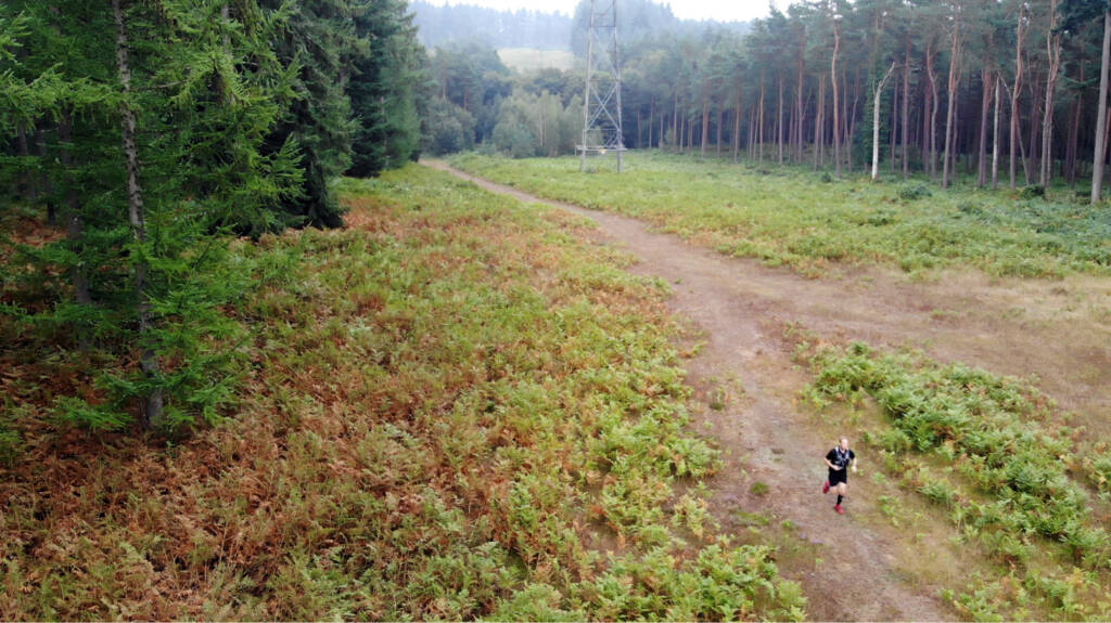 Running a trail between following a power line between two sections of commissioned forest.