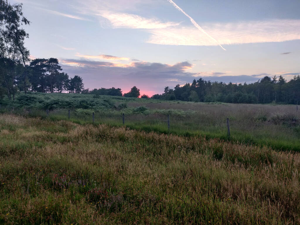 Signs of a great trail run - Sunset over some grassland in Hampshire (UK), near the South Downs