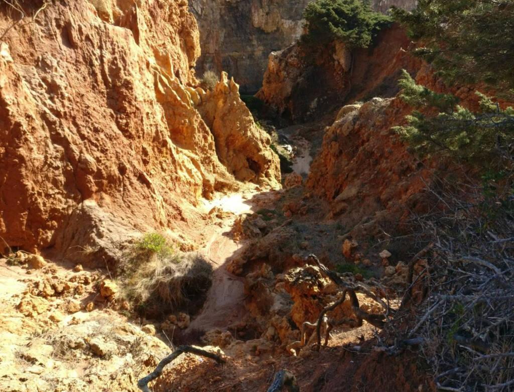 lots of rocks on a coastal trail.