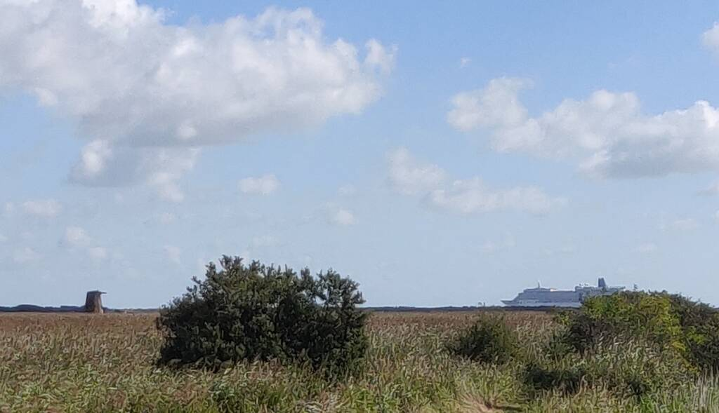 a ship sailing past on the horizon, above the grassland during a coastal trail running session near Dunwich, Suffolk.